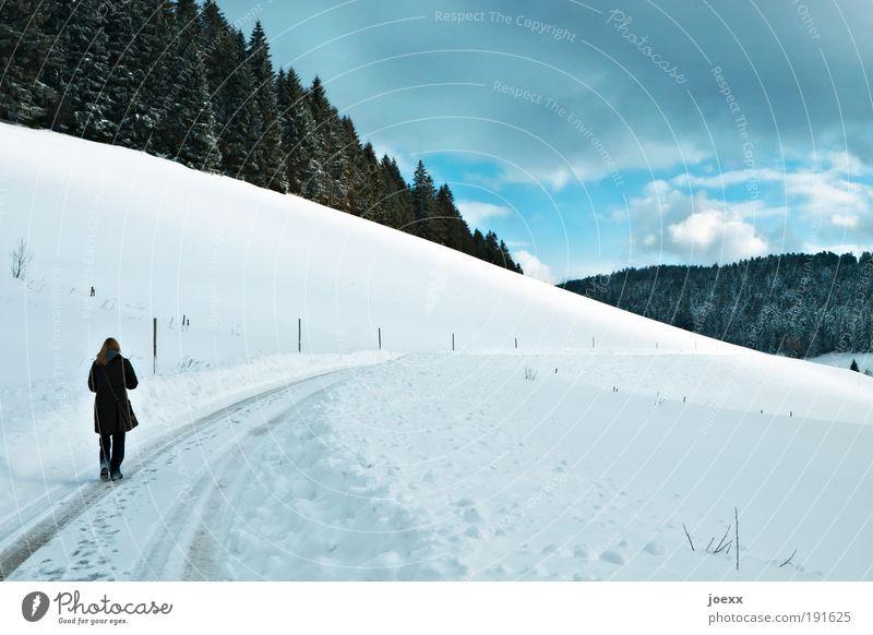 Nachdenken Winter Schnee Winterurlaub 1 Mensch Landschaft Luft Wolken Schönes Wetter Eis Frost Wald Hügel Denken frieren gehen blau weiß ruhig Einsamkeit