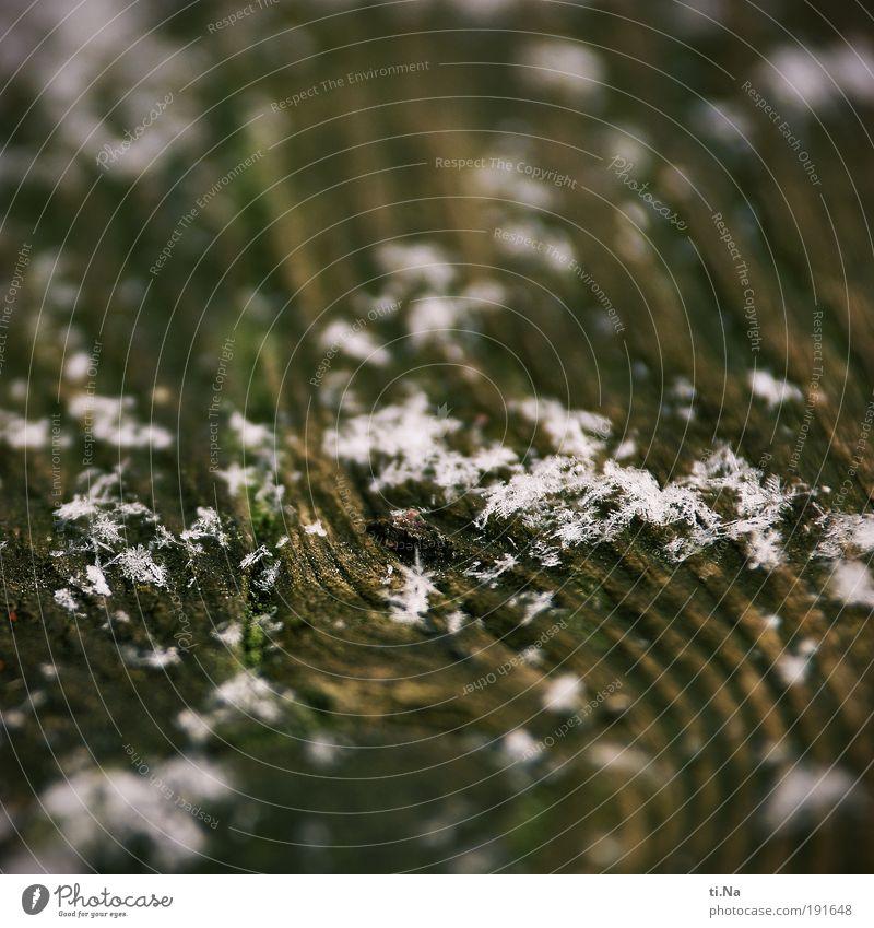 ein Bild mit Schnee oder die vergängliche Invasion Natur Wasser schön weiß Winter ruhig Schnee Holz braun Umwelt nass authentisch liegen Klima einzigartig Gelassenheit