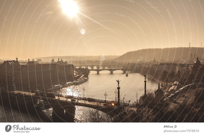 Wintersonne über Fluss Moldau/ Vitava Ferien & Urlaub & Reisen Landschaft Wasser Sonnenlicht Nebel Flussufer Flusslandschaft Prag Tschechien Europa Hauptstadt