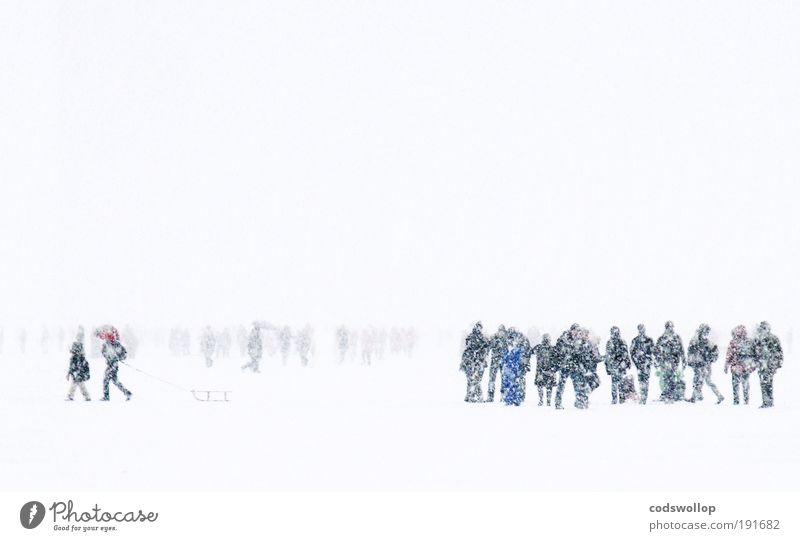 alster blizzard Winter kalt Schnee Mensch Menschengruppe Schneefall gehen Hamburg Zeit Jahreszeiten Natur Alster Eiszeit Eisschicht
