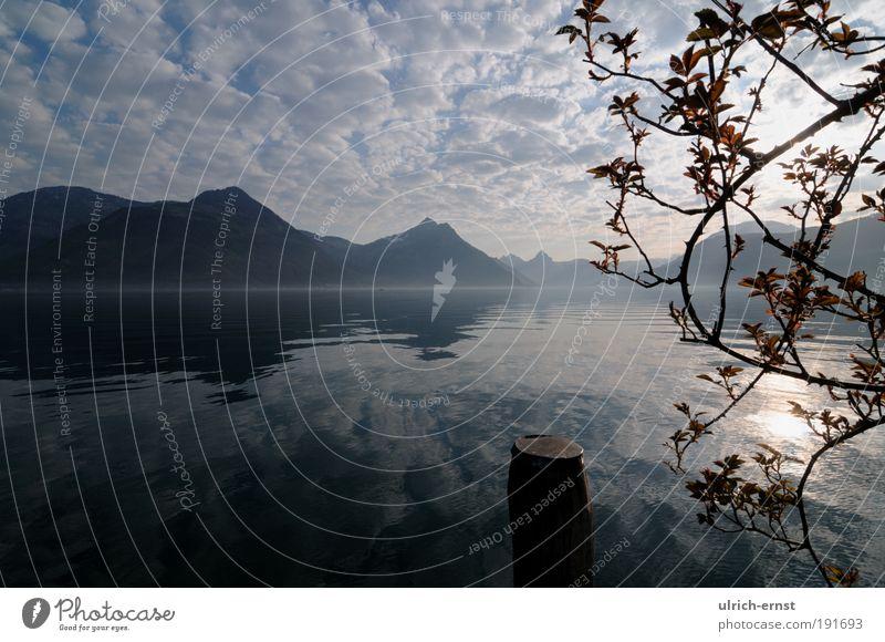 Morgenstimmung Himmel Baum Ferien & Urlaub & Reisen Wolken Erholung Berge u. Gebirge träumen See Landschaft Zufriedenheit Wellen Romantik Sauberkeit Alpen