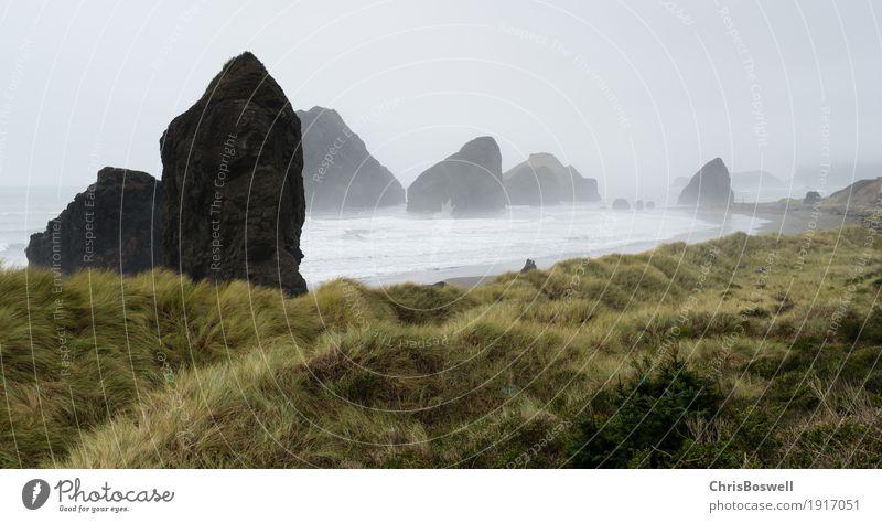 Nebel Rols in der Westküste des Pazifischen Ozeans schön Ferien & Urlaub & Reisen Strand Meer Wellen Natur Landschaft Sand Himmel Wolken Unwetter Wind Gras