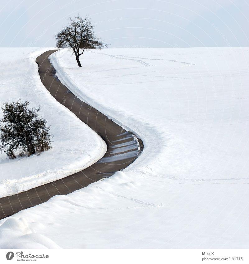 Kurvenstar Baum Winter Ferien & Urlaub & Reisen Straße kalt Schnee Berge u. Gebirge Wege & Pfade Eis Feld Verkehr Ausflug gefährlich Frost Hügel