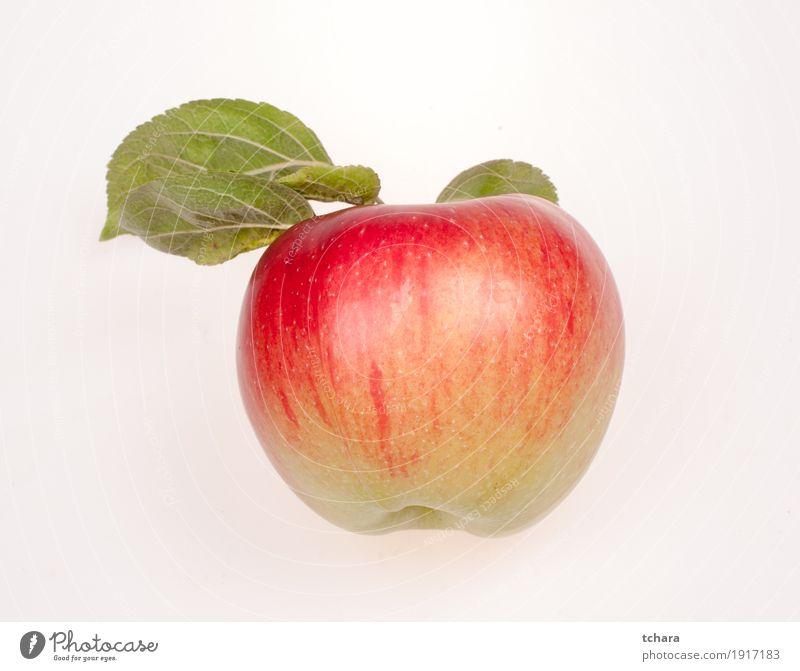 Reifer Apfel Frucht Dessert Ernährung Vegetarische Ernährung Diät Natur Blatt frisch lecker natürlich saftig grün rot weiß vereinzelt Hintergrund Lebensmittel