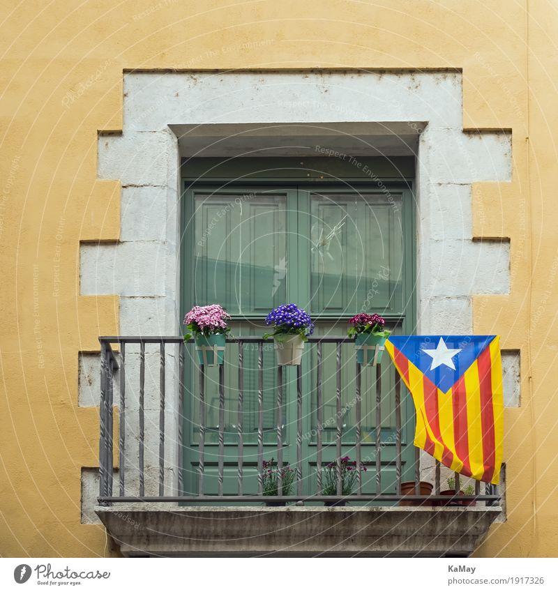 Viva Catalonia alt grün weiß Haus Fenster Architektur gelb Gebäude Stein Fassade historisch Bauwerk Spanien Fahne Altstadt Mut
