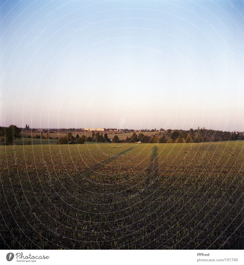 long man shadow Mensch 2 Natur Landschaft Himmel Wolkenloser Himmel Horizont Sonnenaufgang Sonnenuntergang Herbst Schönes Wetter Feld Hügel warten blau grün