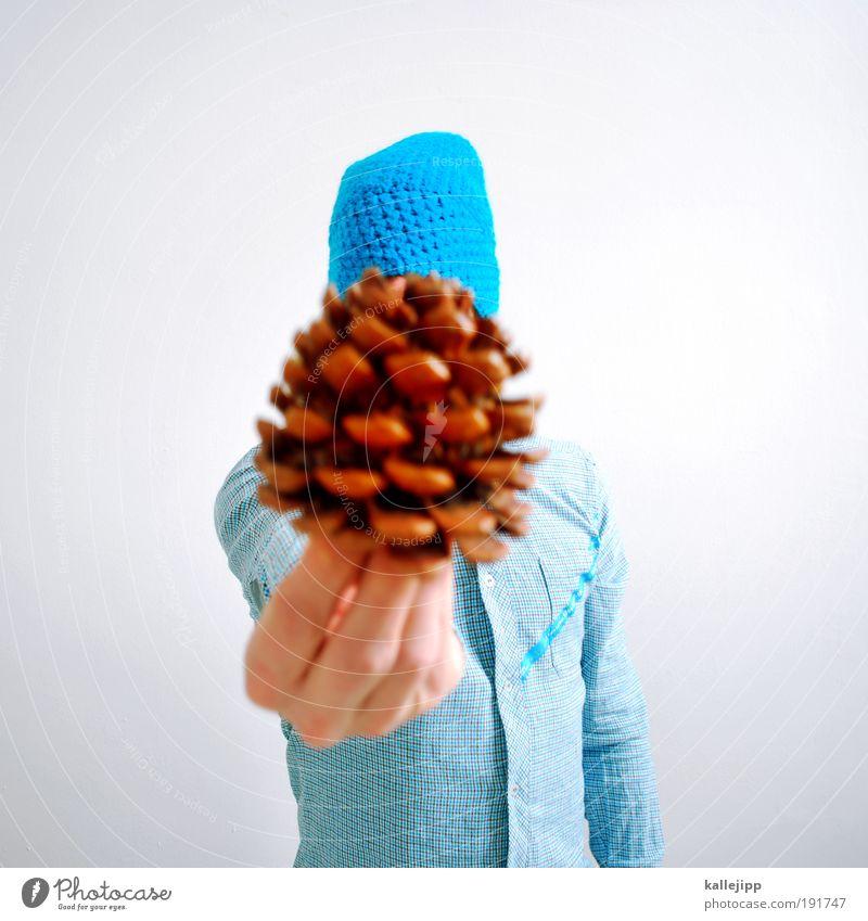 nach halt ich Mensch Natur Hand Baum Pflanze Umwelt Leben Frucht maskulin Erfolg stehen Finger Zukunft berühren Hemd Mütze