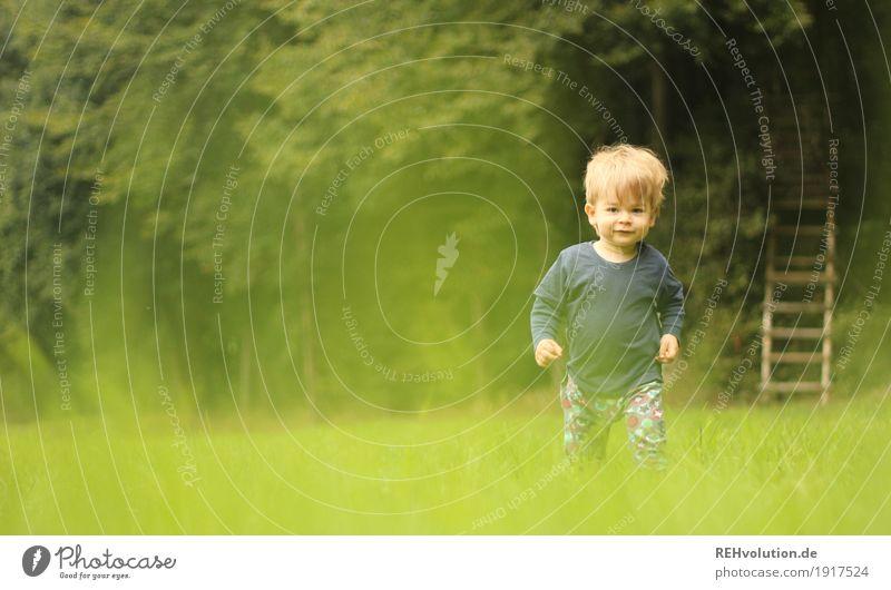 Unterwegs Mensch Kind Natur grün Baum Wald Umwelt Wiese natürlich Bewegung Gras Junge klein Glück gehen maskulin