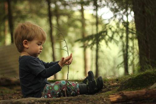 1000 | erstmal hinsetzen und in Ruhe angucken Mensch Kind Natur Pflanze Sommer grün Baum Landschaft Wald Umwelt natürlich Junge Spielen klein Glück maskulin