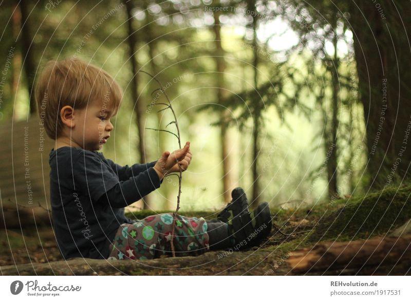1000   erstmal hinsetzen und in Ruhe angucken Mensch maskulin Kind Kleinkind Junge Kindheit 1-3 Jahre Umwelt Natur Landschaft Sommer Pflanze Baum Moos Wald