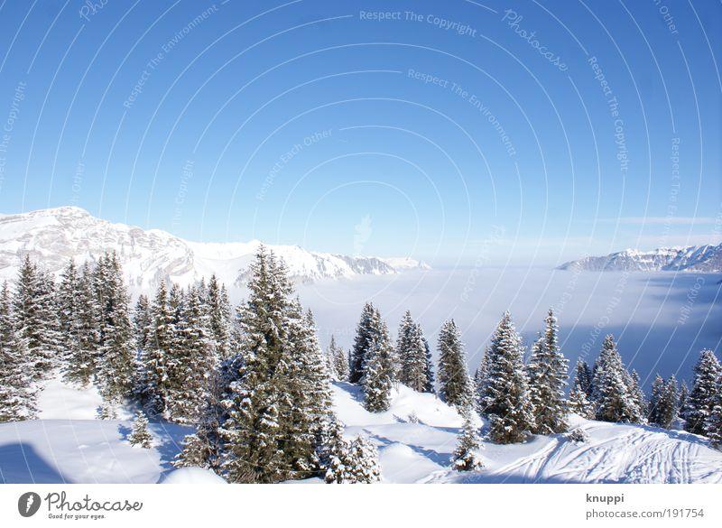 Spuren im Schnee Natur blau weiß Sonne Baum Erholung Landschaft ruhig Winter Berge u. Gebirge Umwelt Stein hell Eis Nebel