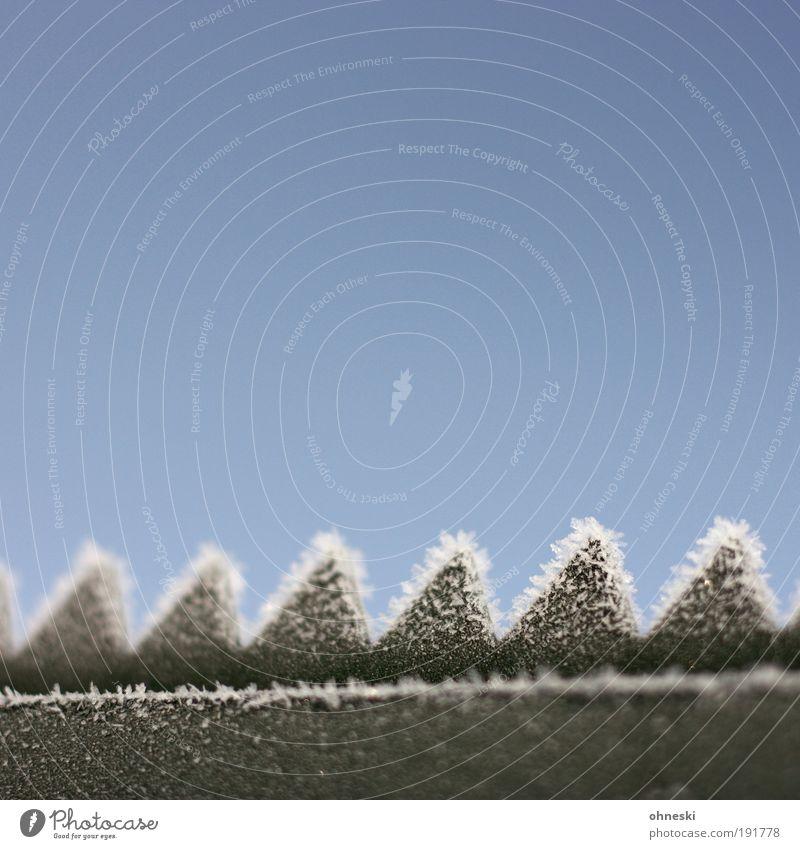 Grisu Sonne grün blau Winter kalt Luft Eis Frost Zaun Schönes Wetter Drache Barriere Zacken abstrakt Morgen Zickzack