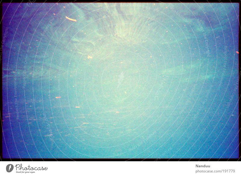 Warp Natur Wasser Meer blau Ferien & Urlaub & Reisen Erholung leer Unendlichkeit Urelemente Schweben Oberfläche Unterwasseraufnahme Textfreiraum links
