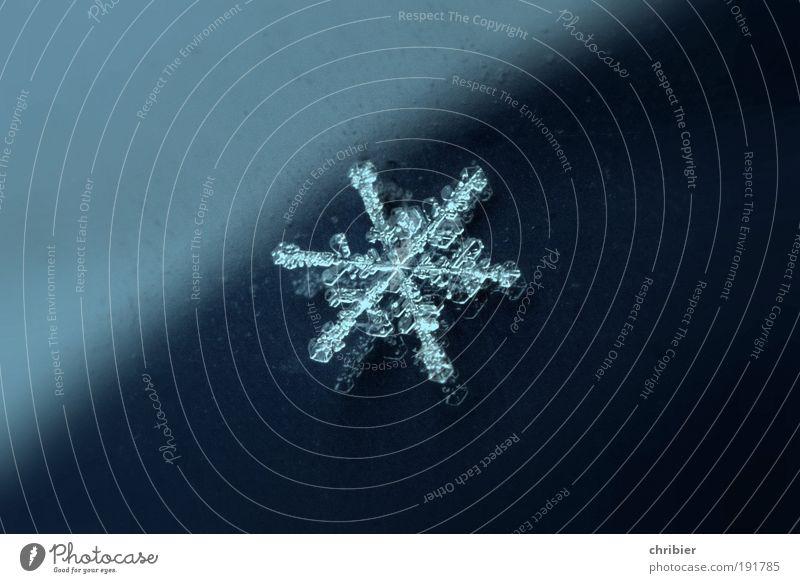 Nummer 845.923.477.852.934! Urelemente Stern Winter Klima Eis Frost Schnee Schneefall Wasser fallen frieren glänzend leuchten schön klein nah blau silber weiß
