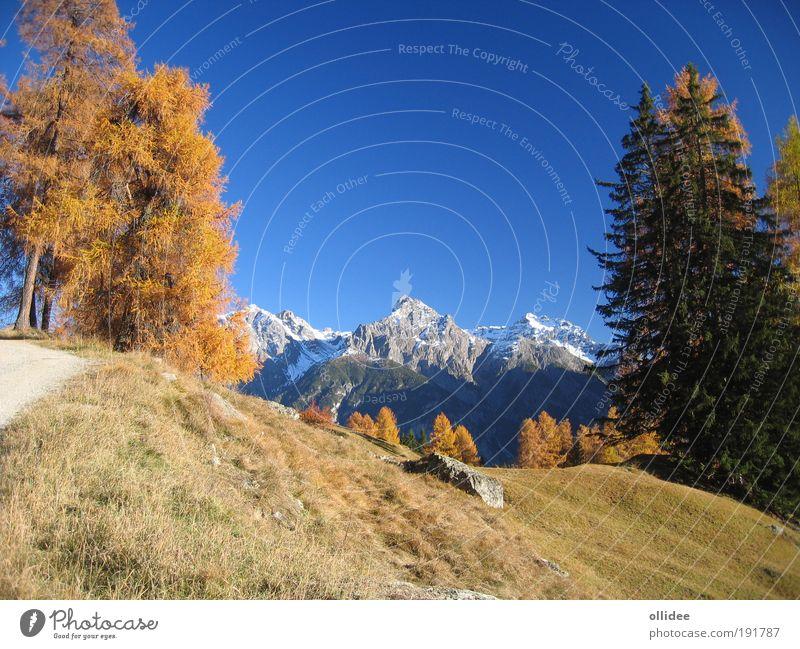 Bergherbst 03 Natur schön Baum blau gelb Erholung Herbst Berge u. Gebirge Landschaft Zufriedenheit braun Umwelt ästhetisch Freizeit & Hobby Sauberkeit Alpen