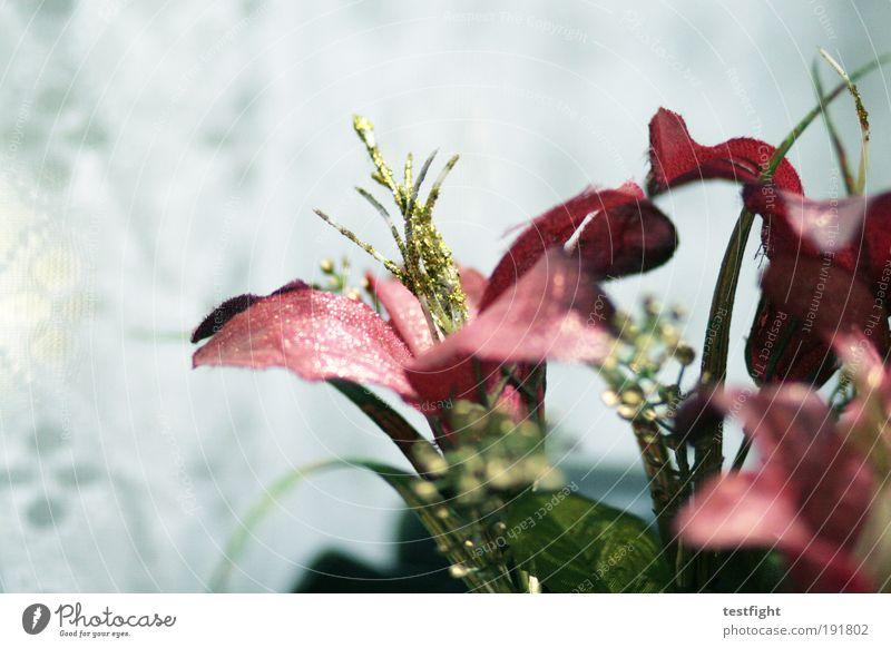 praktisch plastik Pflanze Kunststoffverpackung Dekoration & Verzierung Blumenstrauß Kitsch Krimskrams hässlich bizarr skurril künstlich Farbfoto Innenaufnahme