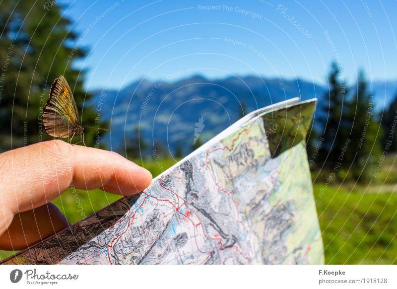Natur entdecken II Hand Zufriedenheit Lebensfreude Stimmung Schmetterling Spielkarte Tier Sommer Alpen Berge u. Gebirge wandern Wildtier fliegen mehrfarbig