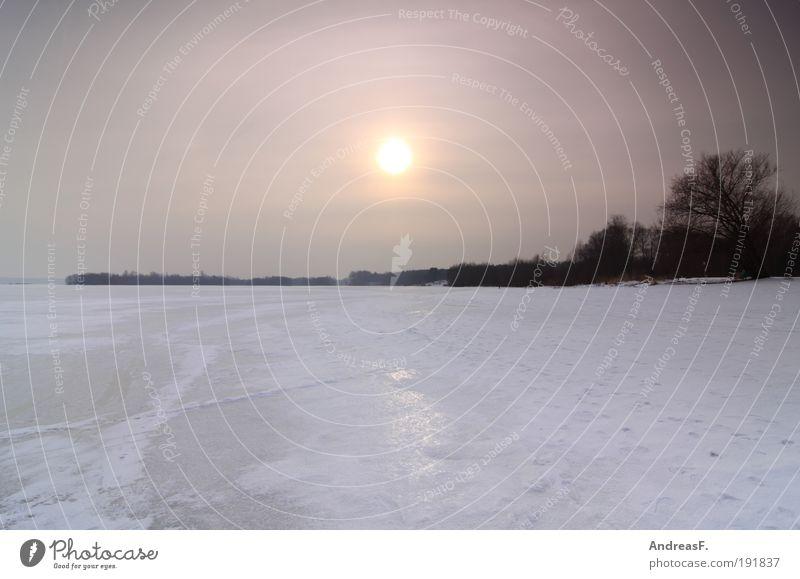 noch ein Winterbild Natur Wasser Himmel Baum Sonne kalt See Landschaft Eis Umwelt Frost gefroren Seeufer Schneelandschaft