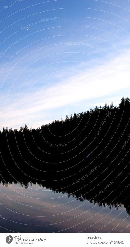 Schwarzwald Umwelt Natur Landschaft Wasser Himmel Wolken Schönes Wetter Wald Seeufer Fjord Teich blau schwarz ästhetisch Zufriedenheit rein ruhig Symmetrie