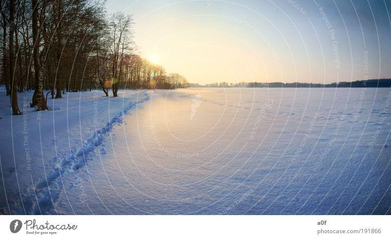 See Umwelt Natur Landschaft Urelemente Wasser Wolkenloser Himmel Sonne Sonnenaufgang Sonnenuntergang Sonnenlicht Winter Klima Klimawandel Wetter Schönes Wetter