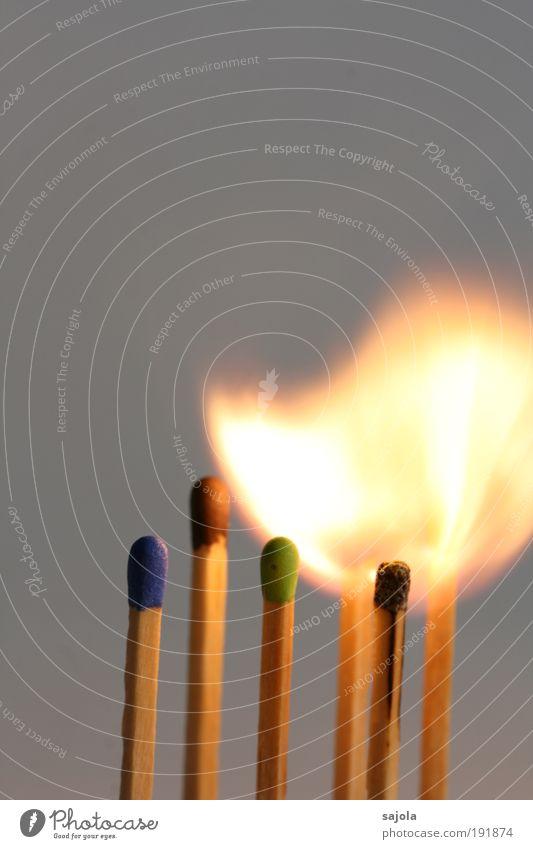 feuer und flamme grün blau rot Holz hell Beleuchtung Energie Feuer Vergänglichkeit heiß Warmherzigkeit leuchten Material brennen Flamme Streichholz