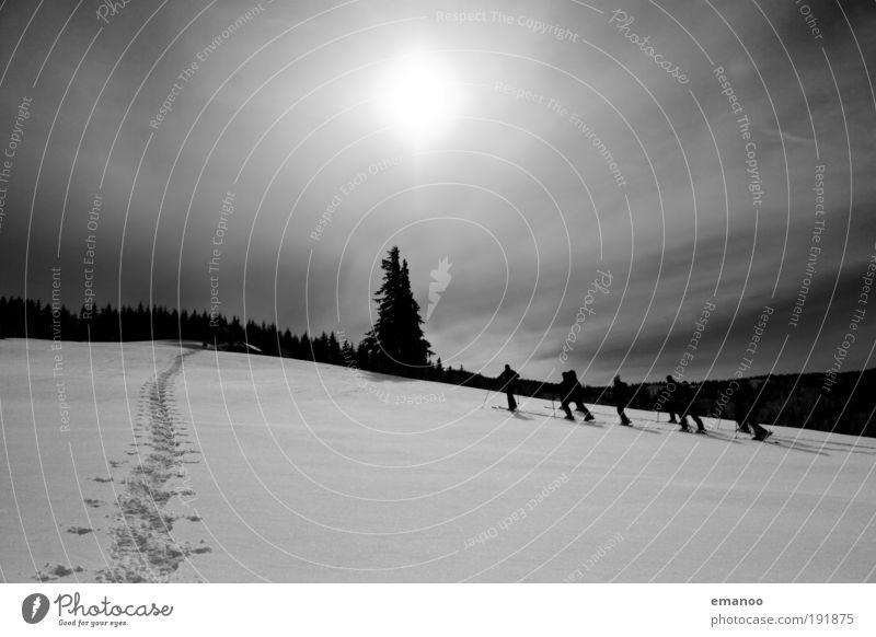 aufstieg Mensch Natur Winter Erwachsene Wald Schnee Sport Landschaft Freiheit Berge u. Gebirge Menschengruppe Wetter Freizeit & Hobby gehen Ausflug wandern
