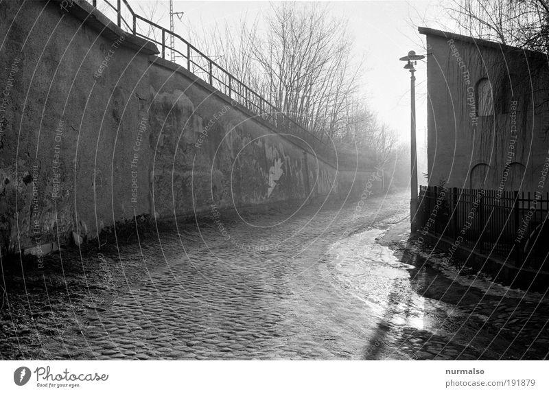 ungewisser Weg ruhig Einsamkeit Straße Wand Umwelt Bewegung Gebäude Mauer träumen Stimmung hell Kunst Nebel Verkehr ästhetisch Klima