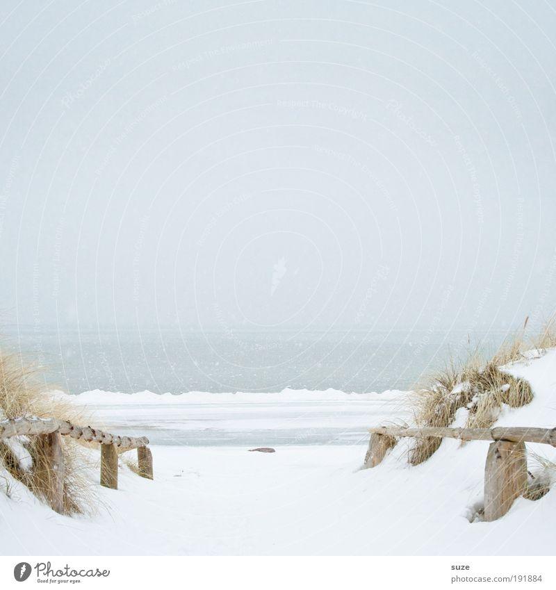 Schneeweiß Himmel Natur Meer Strand Einsamkeit ruhig Winter Landschaft Ferne Umwelt kalt Schnee Wege & Pfade Küste hell Horizont