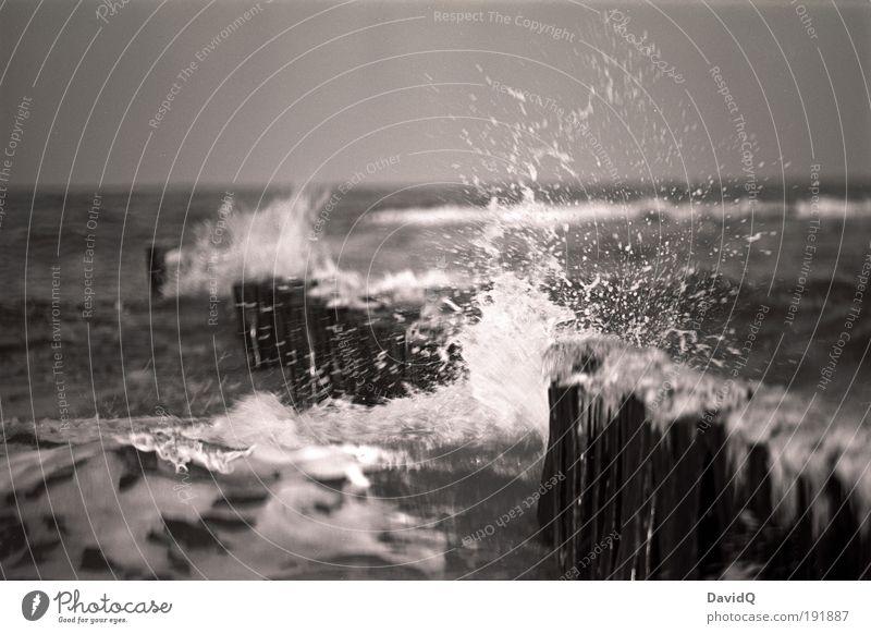 Das Brechen der Welle Umwelt Natur Wasser Wassertropfen Horizont Wellen Küste Strand Ostsee Meer kalt nass schwarz weiß Leben Buhne spritzen spritzig