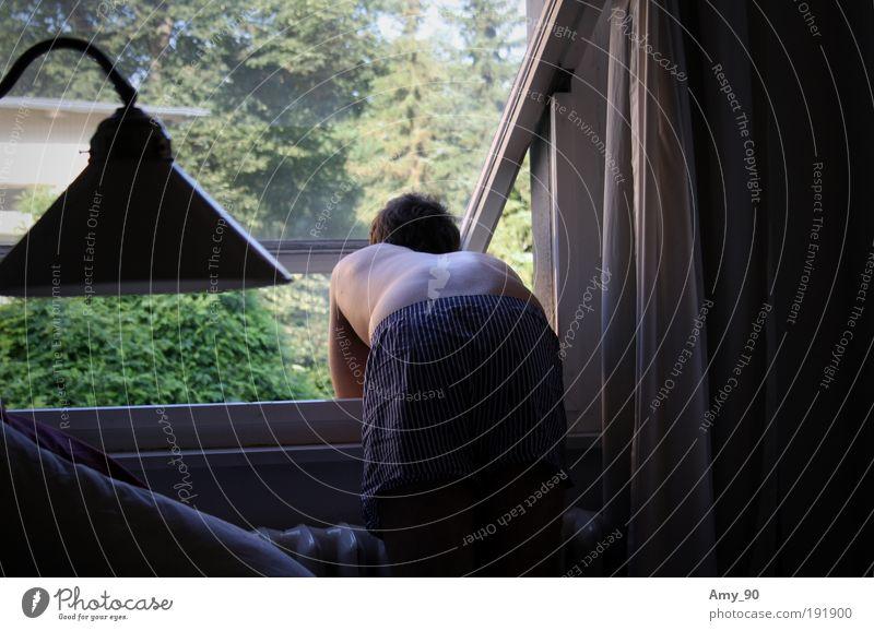 Morgenstunde Mensch Mann Jugendliche ruhig Lampe Leben Fenster träumen Denken Zufriedenheit Erwachsene Wohnung maskulin Rücken Rauchen