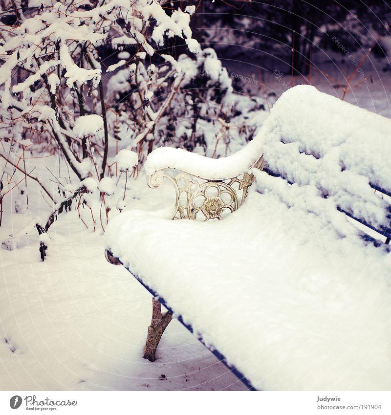 Wintermärchen Erholung Schnee Winterurlaub Umwelt Natur Eis Frost Dekoration & Verzierung Kitsch Krimskrams Bank Zeichen Ornament Schnörkel träumen alt weiß