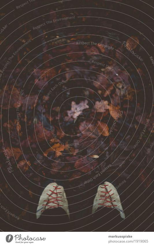 Wandern Herbst Blätter sportlich Fitness Leben Wohlgefühl Zufriedenheit Freizeit & Hobby Ferien & Urlaub & Reisen Tourismus Ausflug Abenteuer Ferne Freiheit
