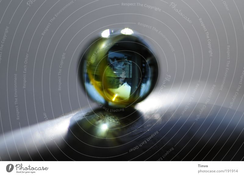 outside in Spielzeug Lupe Teleskop Glas rund Glasperle Glaskugel Murmel Miniatur Wahrsagerei durchsichtig Farbfoto Makroaufnahme Experiment Menschenleer
