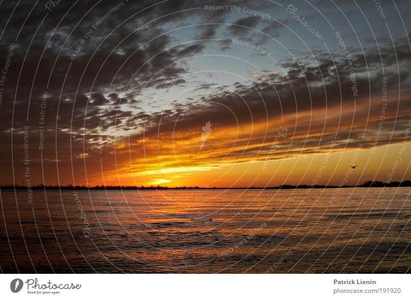 setting sun Himmel Sonne Wolken ruhig Luft Zufriedenheit Ausflug genießen Flussufer Abenddämmerung Elbe Kreuzfahrt Sonnenaufgang Städtereise Blankenese