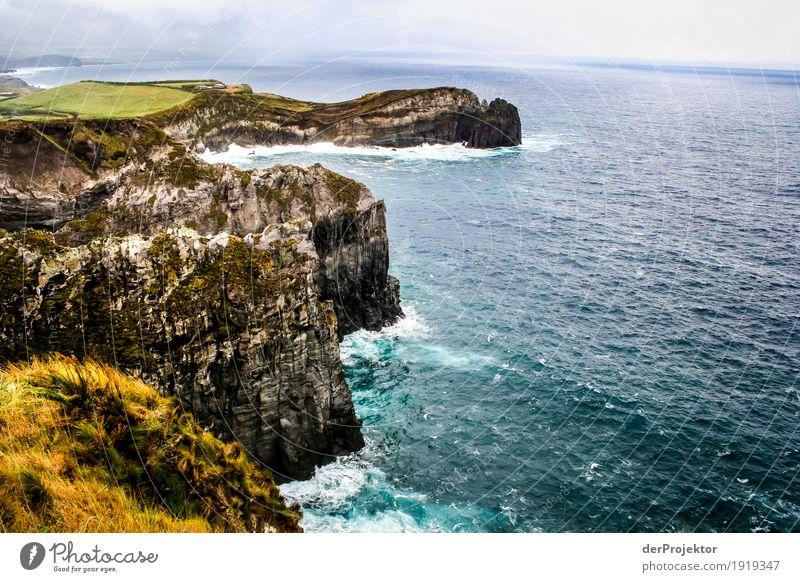 Stürmische Küste von Madeira Ferien & Urlaub & Reisen Natur Pflanze Landschaft Meer Tier Winter Ferne Berge u. Gebirge Umwelt Tourismus außergewöhnlich Freiheit