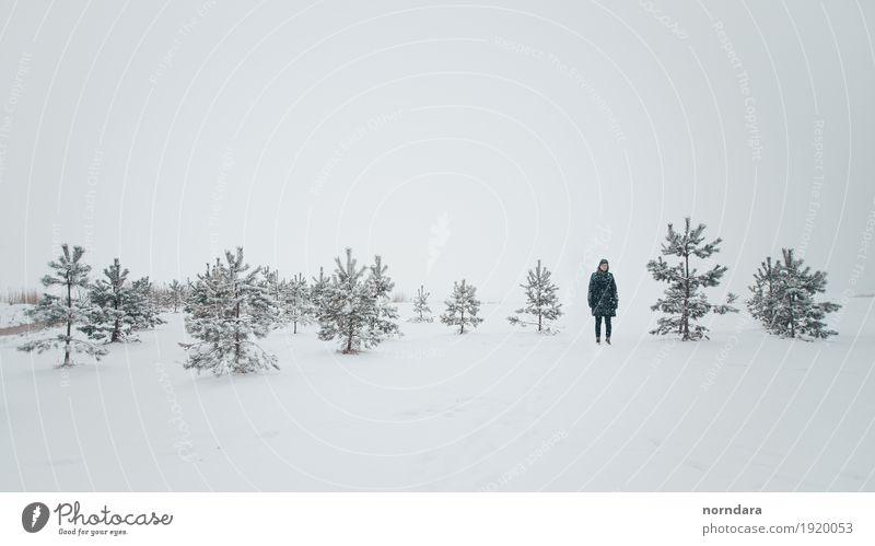 kalter Winter Natur weiß Baum Umwelt Schnee Tourismus Schneefall Wetter Feld Luft wandern Eis leer Frost