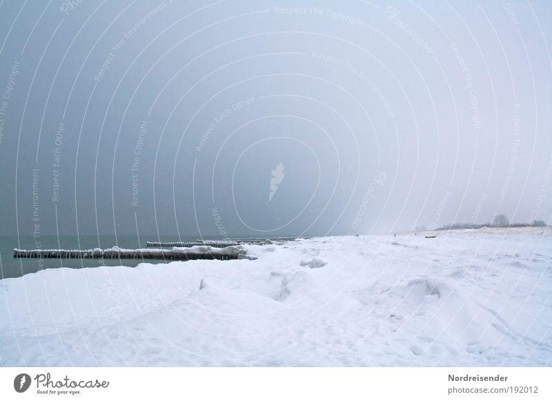 Fischland Darss Natur Ferien & Urlaub & Reisen Meer Winter Strand Einsamkeit Landschaft Schnee Freiheit Küste Eis Wellen Klima wandern Ausflug außergewöhnlich