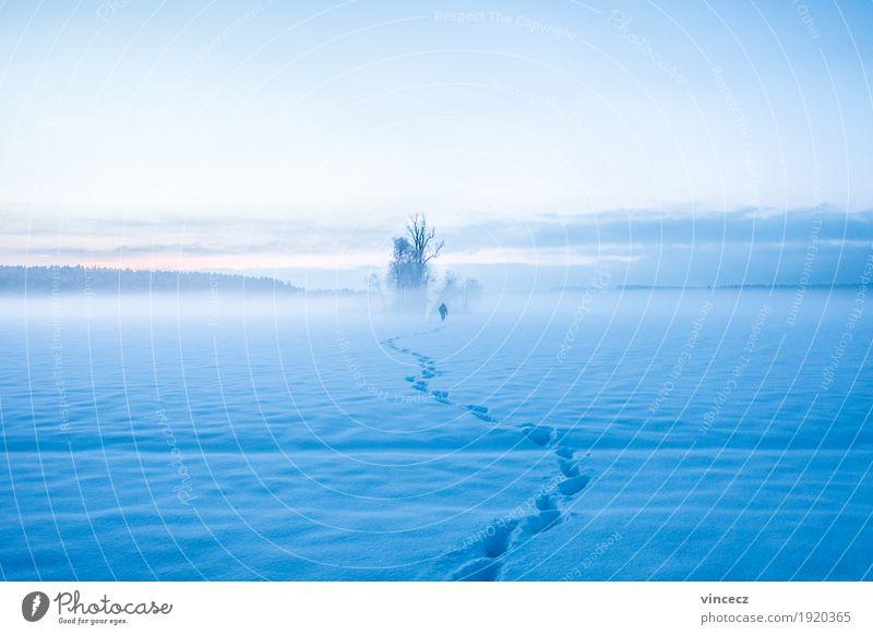 Ins Ungewisse Winter Schnee wandern Mensch 1 Natur Sonnenaufgang Sonnenuntergang Nebel Baum Feld Unendlichkeit Fernweh Einsamkeit Abenteuer Endzeitstimmung