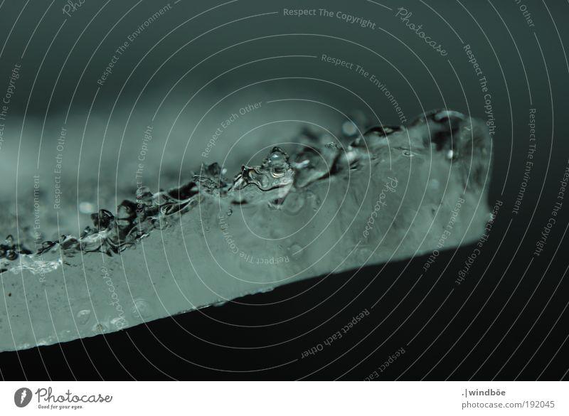 In der Bewegung erstarrt Natur Luft Wasser Winter Klimawandel Wind Eis Frost beobachten berühren Erholung frieren fest frisch glänzend kalt modern nass