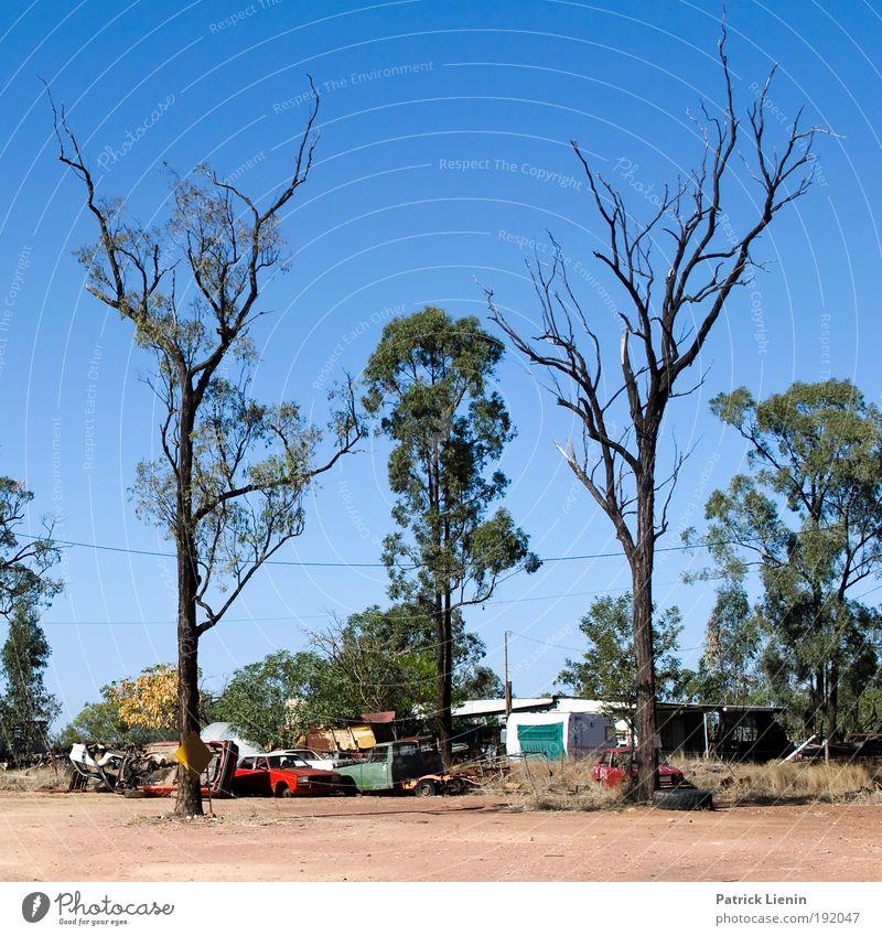 Abgebrannt Himmel Baum Sommer Einsamkeit Ferne Umwelt Landschaft Wärme PKW Feuer Klima kaputt trist trocken Camping Schönes Wetter