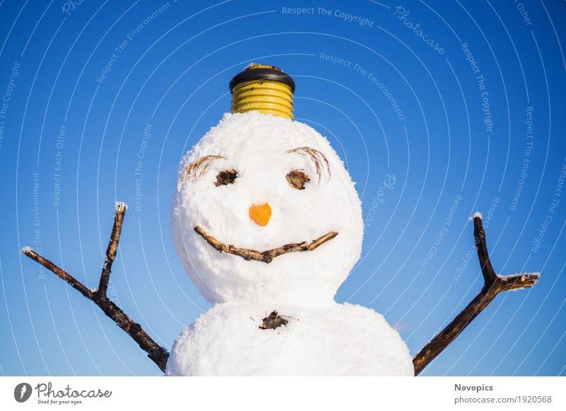 snowman I Mensch maskulin Natur Winter Klima Eis Frost Schnee Schneefall Zeichen lustig blau braun rot weiß Portrait Schneemann Augen Nase Augenbraun Möhre