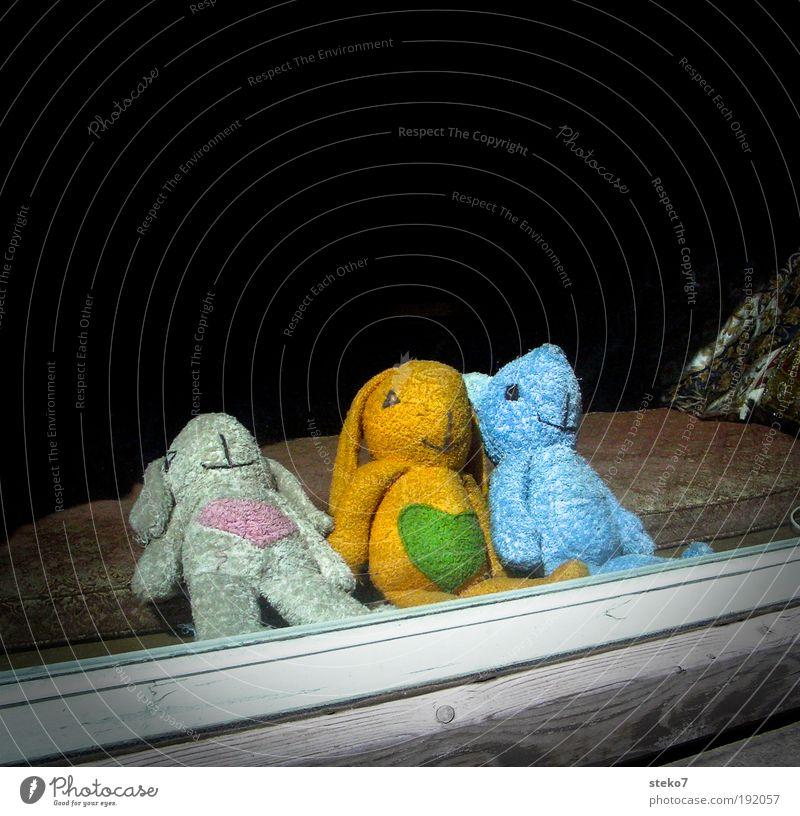 Plüsch zu Dritt Fenster Teddybär Stofftiere Erholung träumen einzigartig Pause unschuldig Zusammenhalt Zusammensein 3 Hase & Kaninchen Bär Herz Schaufenster