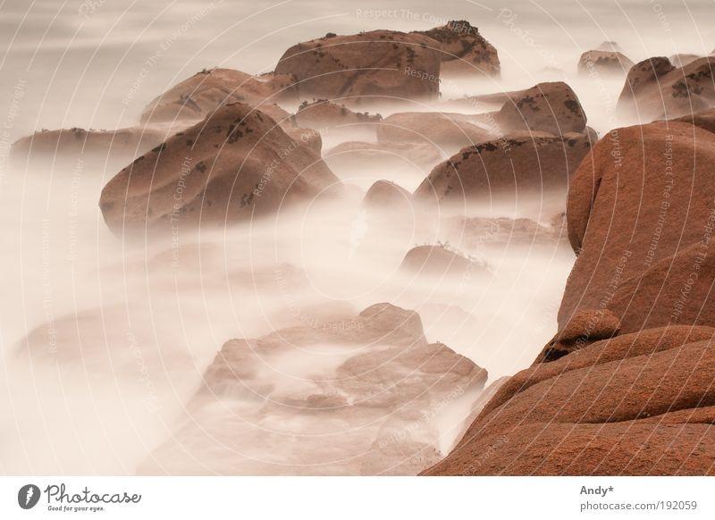 Nebel von Avalon Natur Wasser weiß Meer Ferien & Urlaub & Reisen Ferne Erholung träumen Stein Landschaft Stimmung Wellen Küste rosa