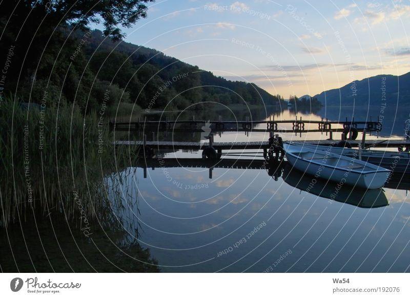 Stille über dem See Natur Wasser Himmel weiß Baum blau Ferien & Urlaub & Reisen ruhig Einsamkeit Wald Erholung Holz träumen Wärme Zufriedenheit Stimmung