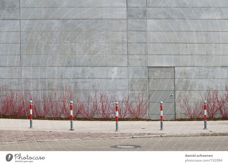 Frühling !!! rot Straße grau Tür Beton Fassade Sträucher Verkehrswege