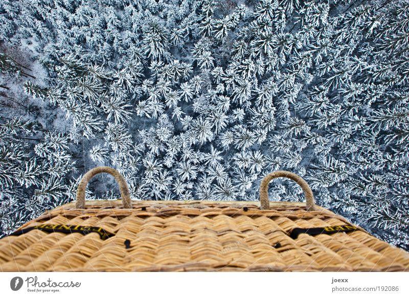 Der fliegende Korb Abenteuer Natur Winter Eis Frost Schnee Baum Wald Luftverkehr Ballone entdecken fahren hängen Ferien & Urlaub & Reisen träumen hoch oben