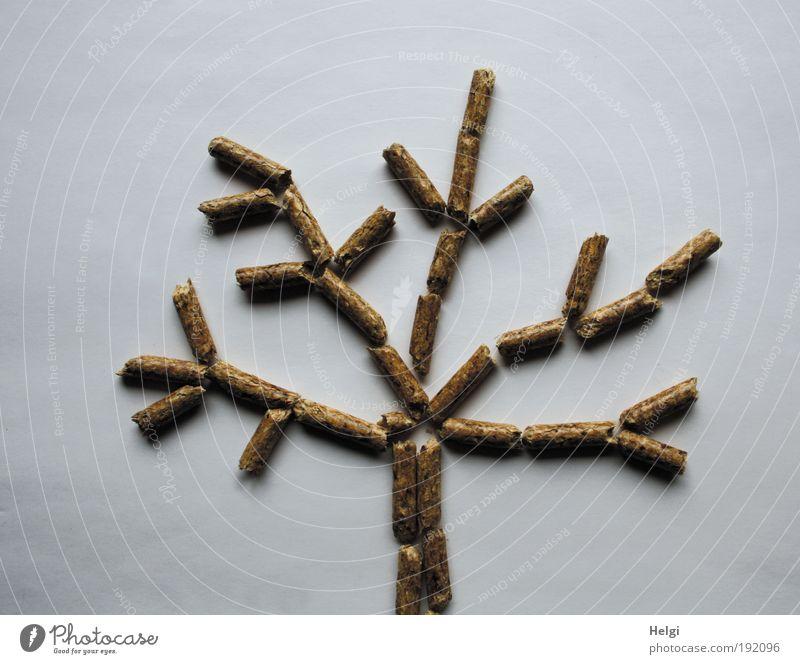 Baum bestehend aus Holzpellets auf weißem Hintergrund Wissenschaften Fortschritt Zukunft Energiewirtschaft Erneuerbare Energie Umwelt Natur Winter Klima