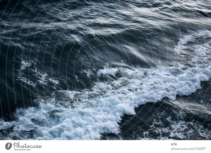 it´s always the sea Wasser Wellen Nordsee Ostsee Meer Bewegung fließen Brandung Strömung Urelemente Farbfoto Außenaufnahme Licht Schatten