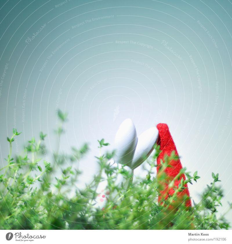 schichtwechsel lustig Osterhase Weihnachtsmann Wicht Nikolausmütze Figur Sträucher Himmel Versteck Farbfoto mehrfarbig Textfreiraum oben Textfreiraum Mitte