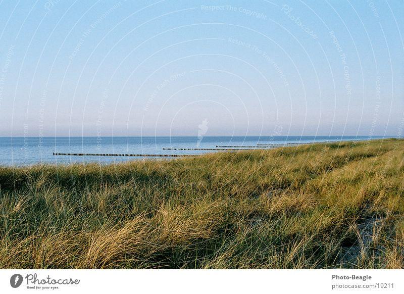 Abschiedsblick See Meer Wellen Strand Abendsonne Abenddämmerung Ferien & Urlaub & Reisen Zingst Ostsee Baltic Sea Wasser Buhne Sand weiches Licht Stranddüne